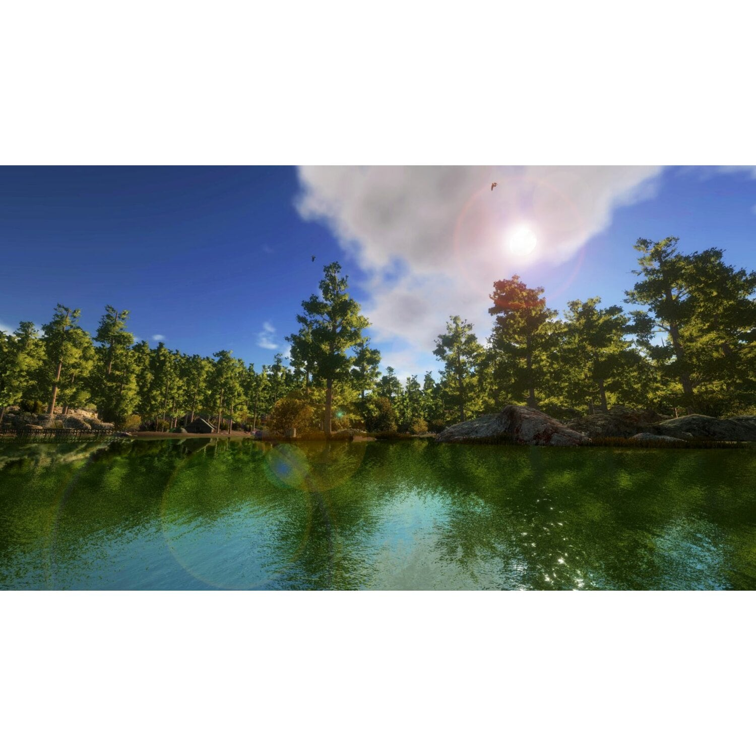 Gra PC Pro Fishing Simulator
